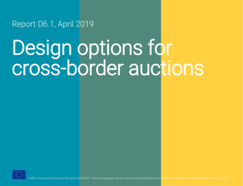 Design options for cross-border auctions