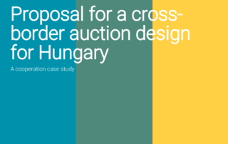 auction design Hungary