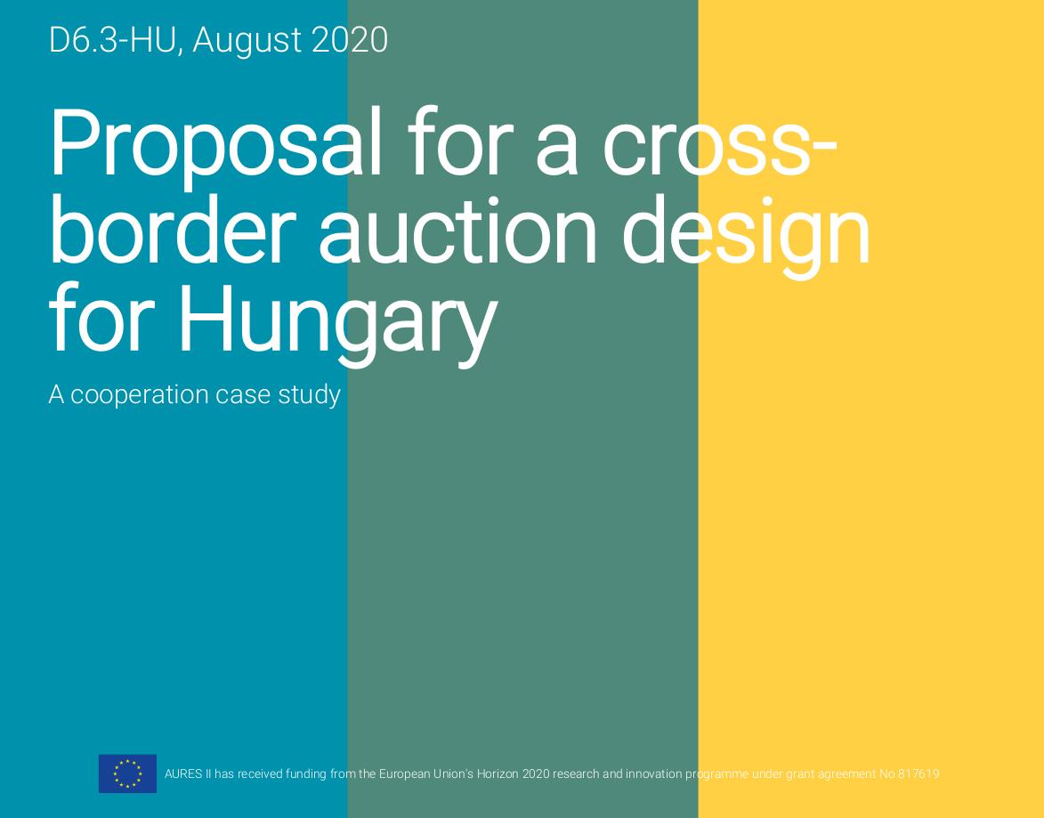 auction design Hungary